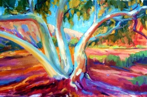 Ghost gums - 50x30 oil on canvas