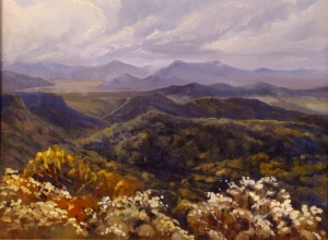 Tweed Valley from Mount Warning, 50x40 cms