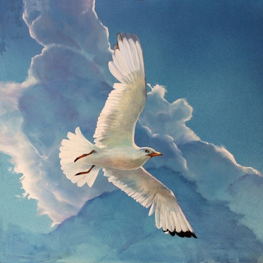 The Art of Riding on the Wind - No. 4, Silver Gull oil on composite aluminium panel 40x40cms