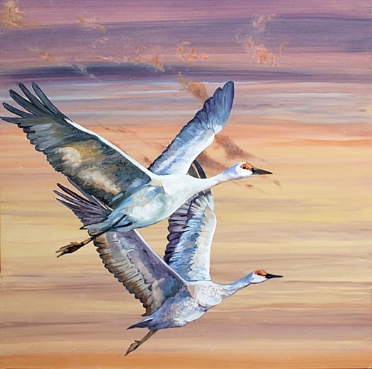 The Art of Riding the Wind, No. 9.  Sandhill Cranes.  Oil on composite aluminium panel, 40x40 cms.