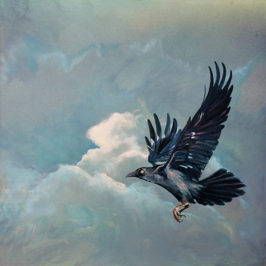 The Art of Riding the Wind No. 8 - Australian Crow - 40x40 cms oil on composite aluminium panel