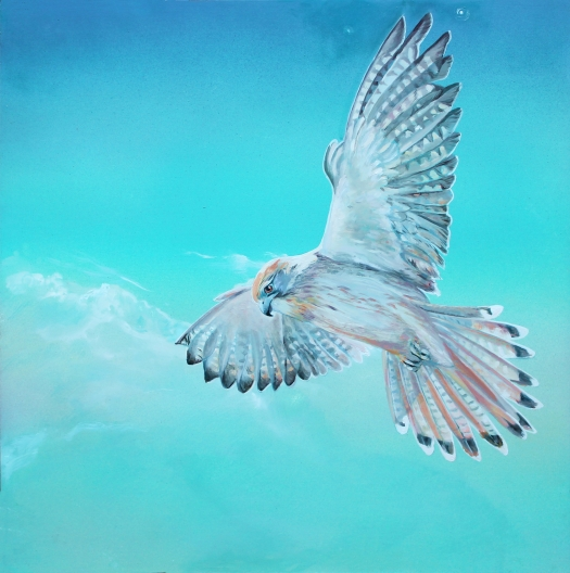 The Art of Riding the Wind No. 7 - Kestrel Oil and acrylic on composite aluminium panel 40x40 cms