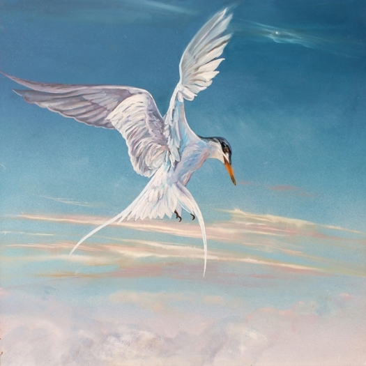 The Art of Riding the Wind - No. 10, Arctic Tern, oil on composite aluminium panel 40x40