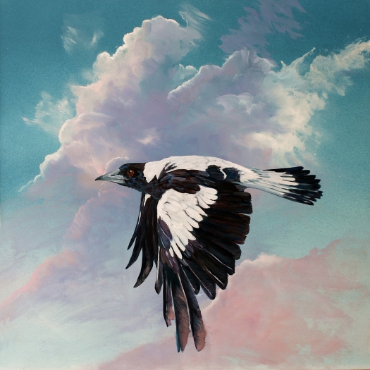 The Art of Riding on the Wind No. 7 Australian Magpie a