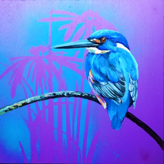 Feathery all-sorts 6 Azure kingfisher.web